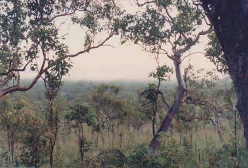 Image73